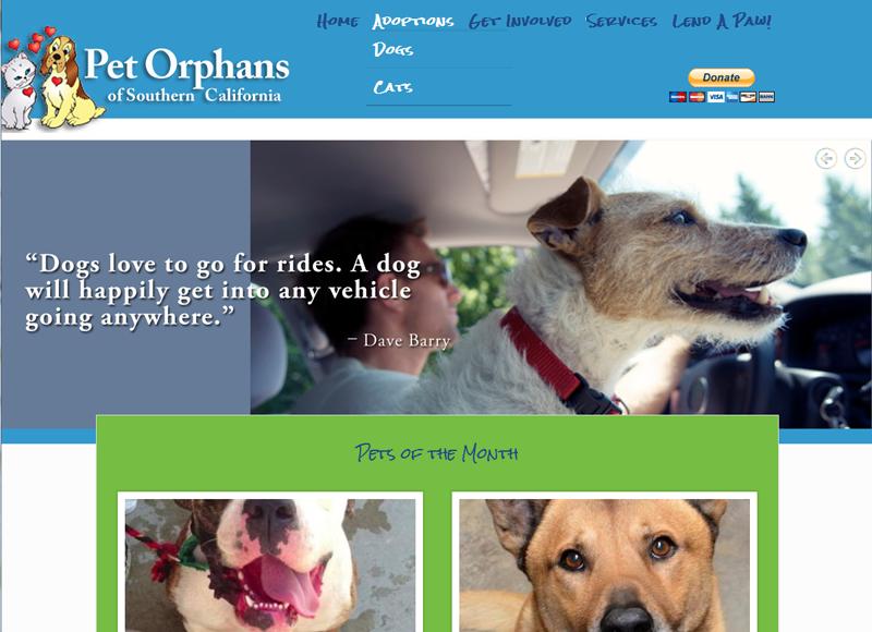 Pet Orphans